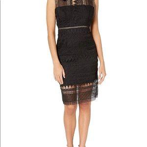 Bardot mariana black lace dress